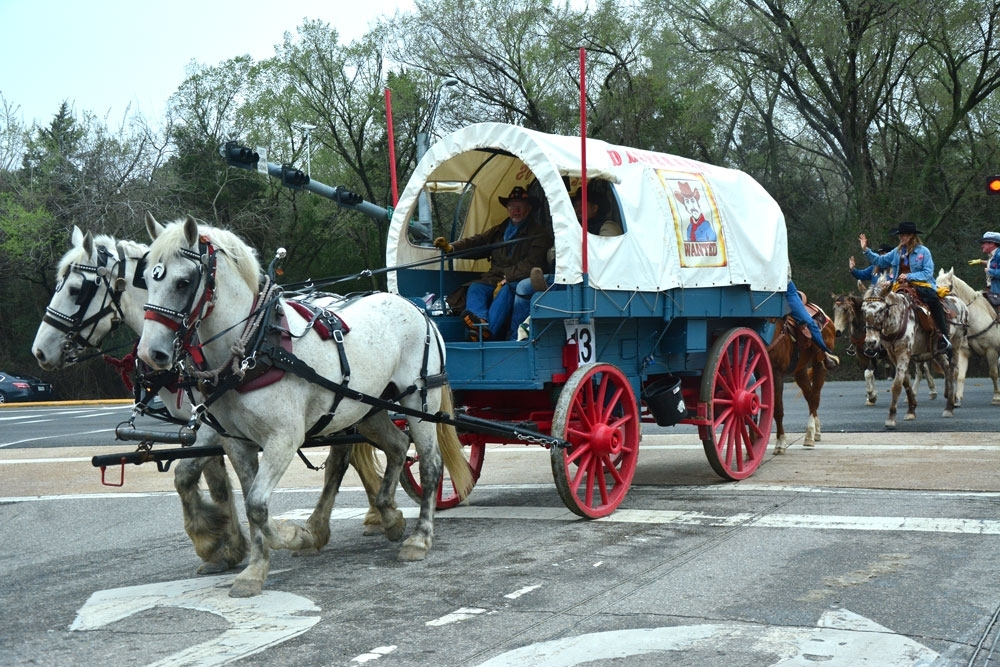 Wagon 13, or the Desperados, pulls onto Patterson Road. The Salt Grass Trail has about 30 wagons.